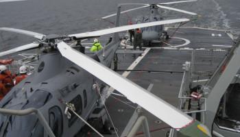 Technical Advisor - Helicopter Platforms
